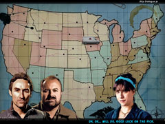 American Pickers: The Road Less Traveled thumb 1