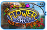 Download Flower Shop Game