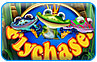 Download Fly Chaser Game
