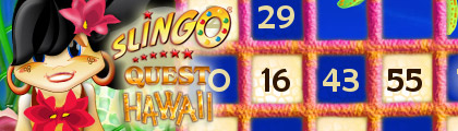 Slingo Quest Hawaii screenshot