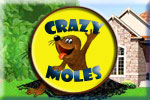 Crazy Moles Download