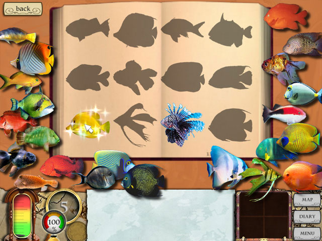 Treasure Masters, Inc. large screenshot