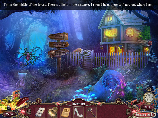 Surface: Lost Tales Collector's Edition large screenshot