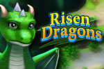 Download Risen Dragons Game