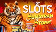 IGT Slots Sumatran Storm