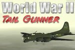 Download WW2 Tail Gunner Game