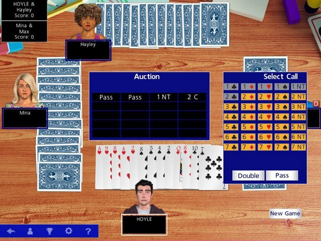Hoyle Official Card Games large screenshot