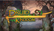 Download Druid Kingdom Game