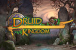 Druid Kingdom Download