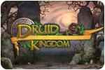 Download Druid Kingdom Game