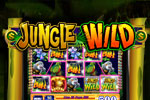 WMS Slots: Jungle Wild Download