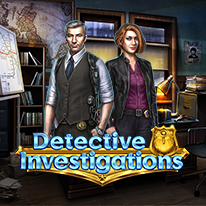 image for Detective Investigations