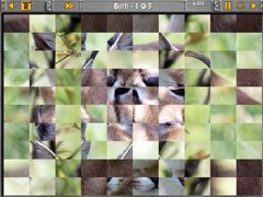 Sliders & Other Square Jigsaw Puzzles thumb 3