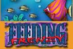 Feeding Frenzy Download